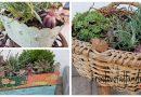 Obstkisten und Weidenkorb bepflanzen | Gartendeko